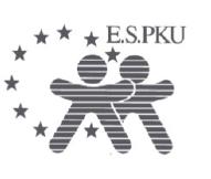 E.S.PKU 2012