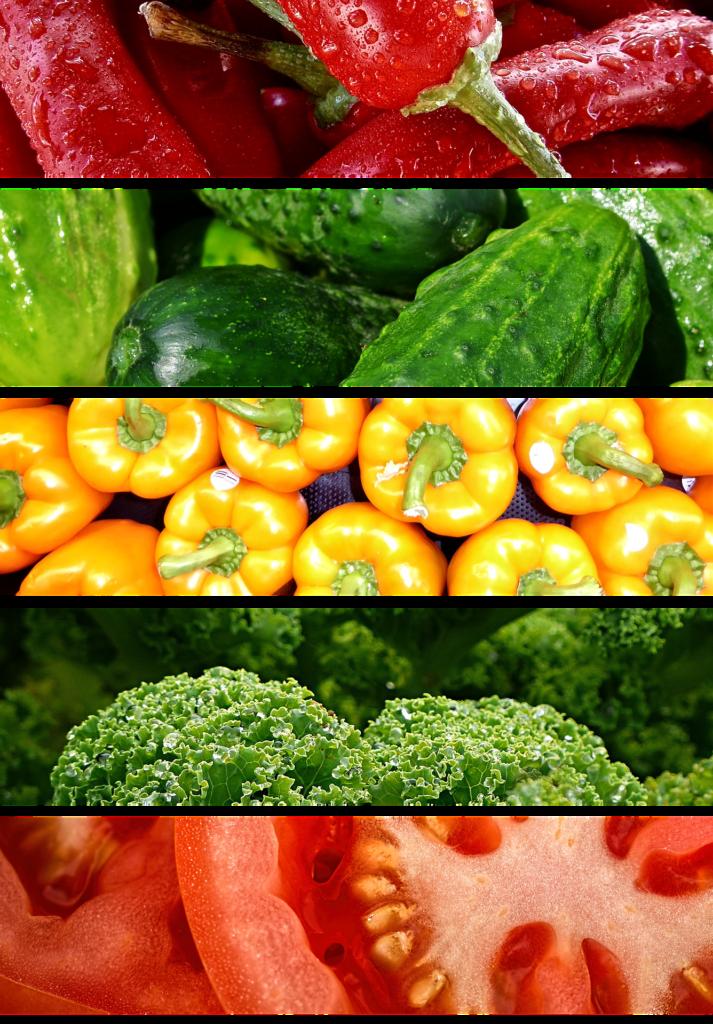 dieta baja en proteína