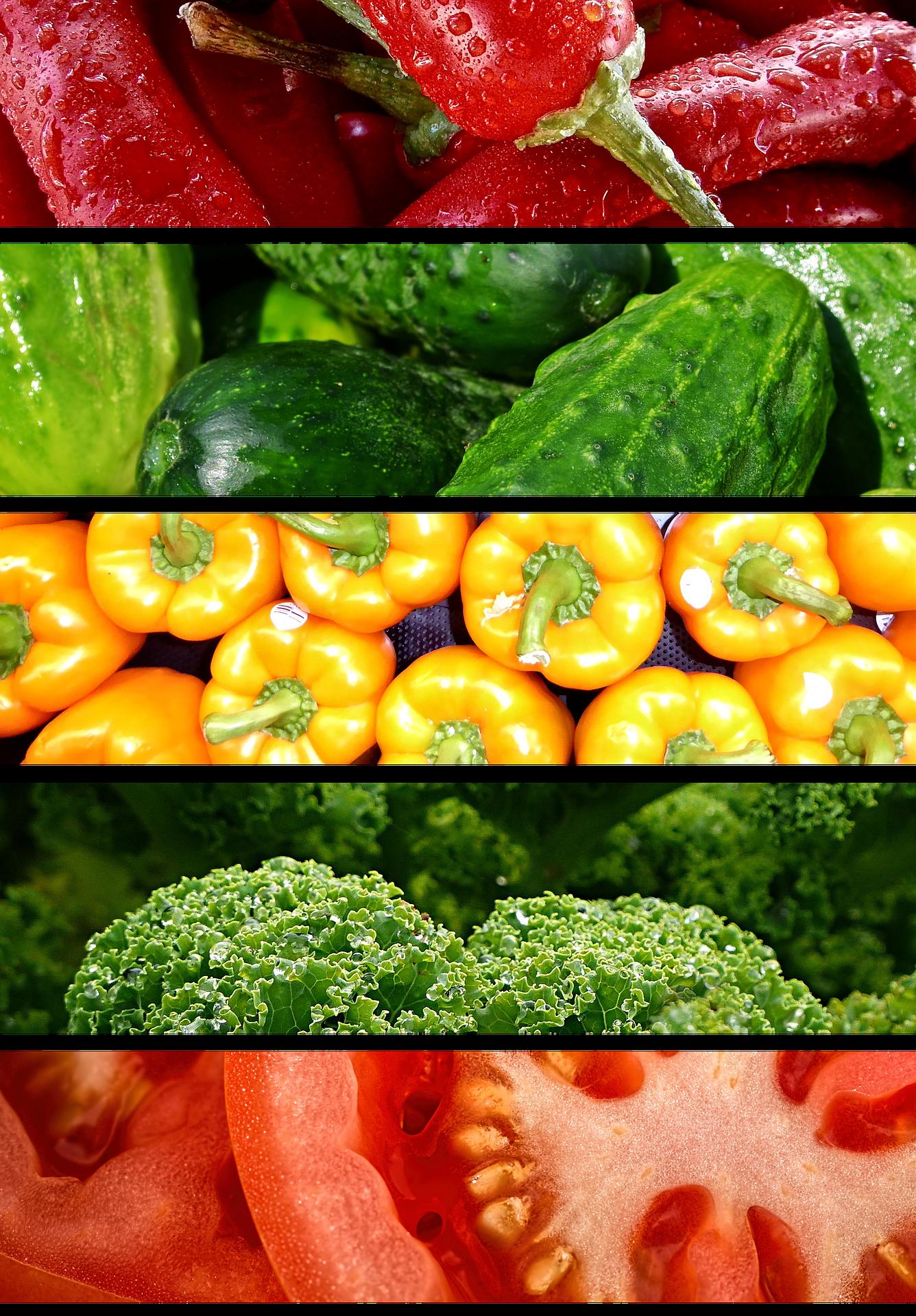 Dieta baja en proteinas